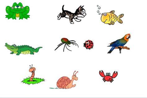 imagenes animales vertebrados e invertebrados para imprimir animales vertebrados e invertebrados