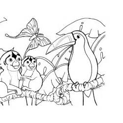 Coloring pages of rainforest animals color on pages coloring