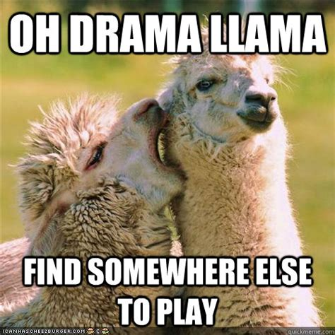 oh drama llama find somewhere else to play drama llama