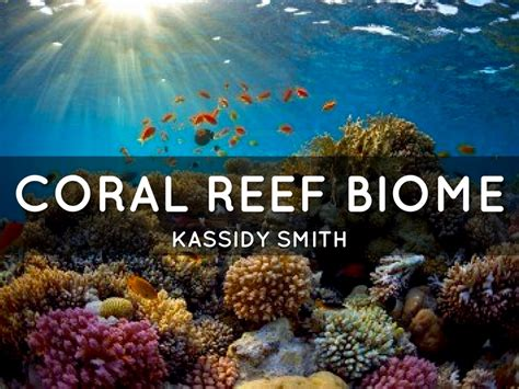 Haiku Deck Gallery Science And Technology Presentations And Templates Coral Reef Powerpoint Template Free