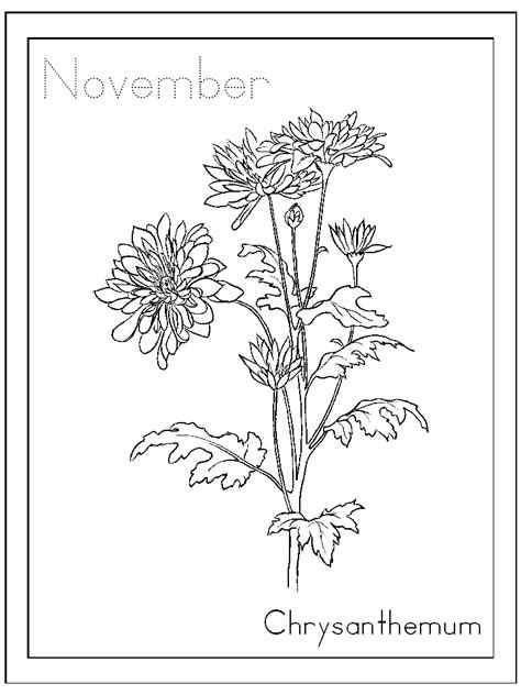 chrysanthemum mouse coloring page free november coloring pages printable coloringstar