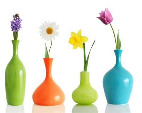 colorul flower vases colorful flowers in different