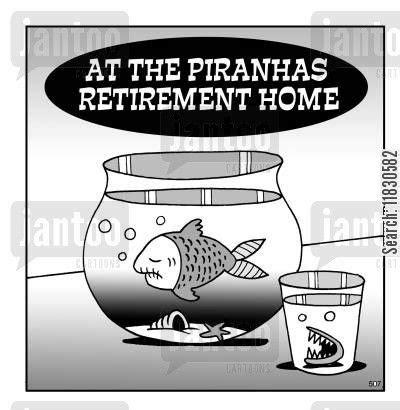 nursing home humor nursing home cartoon humor