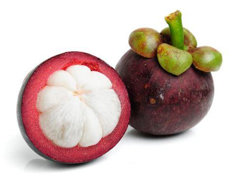 Ekstrak Buah Manggis Xamthone khasiat buah untuk kesehatan khasiat buah manggis