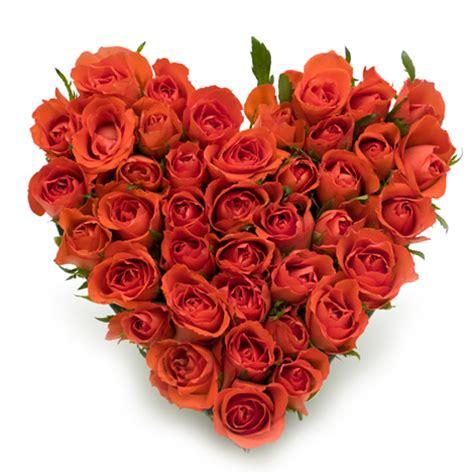 envoye des fleurs livraison de fleurs envoyer le bouquet 50 roses