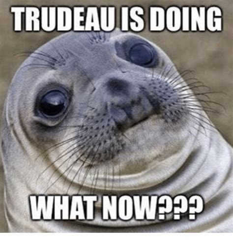 What Now Meme - trudeauis doing what now meme on sizzle