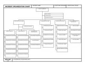 Fillable Flow Chart Template by 10 Best Images Of Fillable Blank Ics Organizational Chart