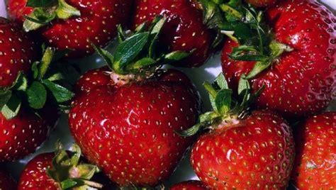 emoglobina bassa alimentazione emoglobina e alimentazione