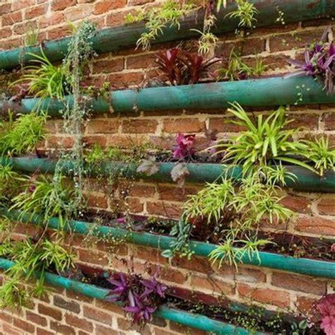 Living Wall Diy Vertical Garden Grow A Vertical Garden Indoors Living Walls And Vertical