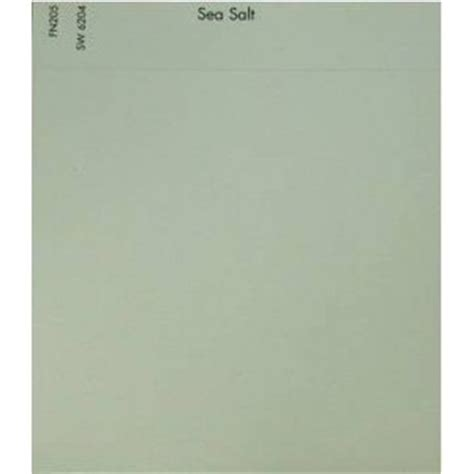 sherwin williams sea salt wall color stuff about paint