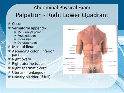 lower right abdominal pain after c section ppt abdominal exam powerpoint presentation id 6706245