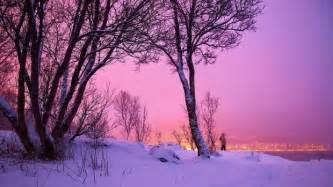 Love in winter hd wallpaper love in winter picture love in winter