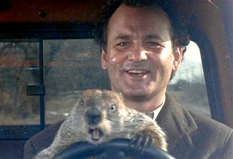 groundhog day zen and if he sees his shadow perry garfinkle s roar