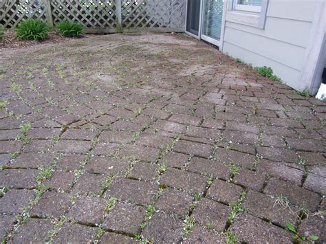 Paver Backyard by How To Clean Patio Pavers Patio Design Ideas