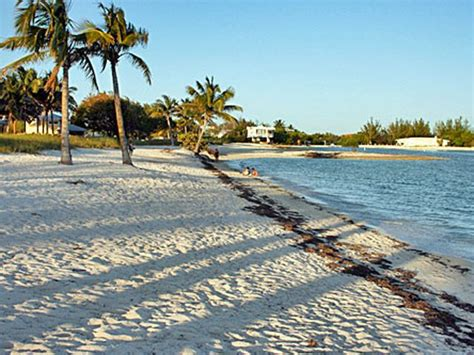 cheap boat rentals islamorada 26 best hawks nest fl images on pinterest the florida