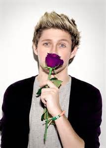 what is niall horans favorite color 2201 best images about niall horan on