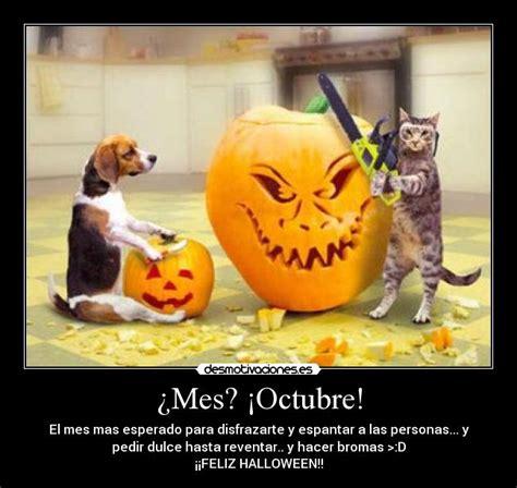 imagenes mes octubre halloween 191 mes 161 octubre desmotivaciones