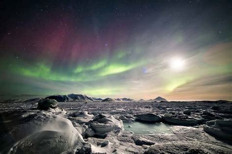ll bean northern lights arctic express greenland s northern lights fly north
