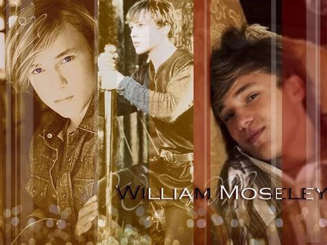 narnia film rækkefølge william moseley peter pevensie