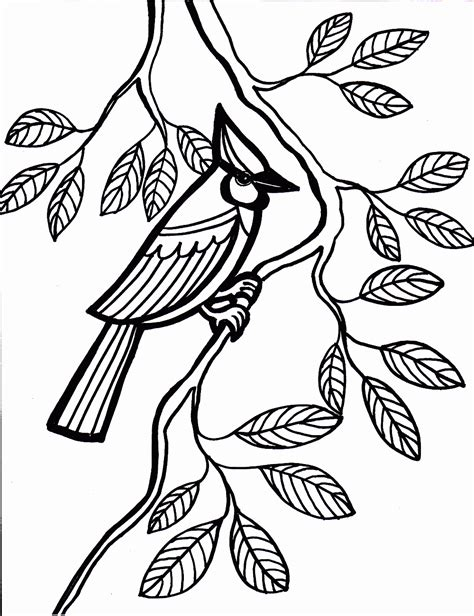 bird design coloring page new coloring pages birds kids design gallery 5372