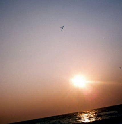 dreams goals aspirations poems short poems quotes marinela reka