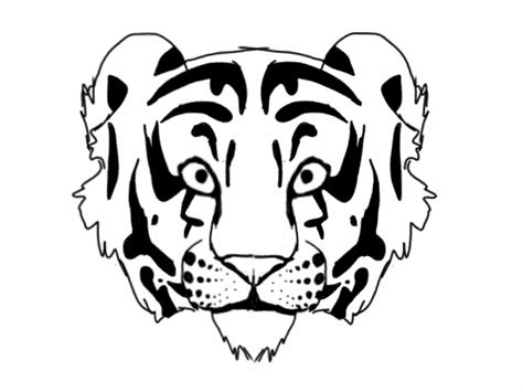 Tiger Outline Images by Tiger Outline By Raynefeather25 On Deviantart
