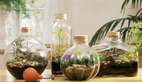 garden in a bottle desktop gardens simple ideas for cool diy terrariums