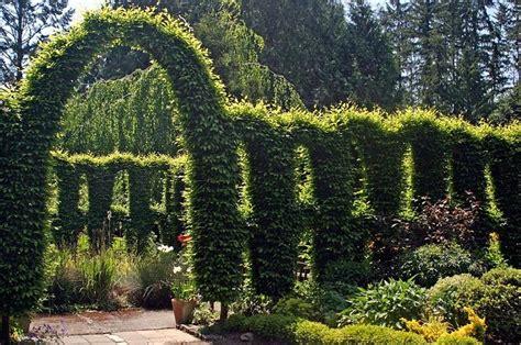 botanical gardens washington state washington state botanical gardens nwgardens february