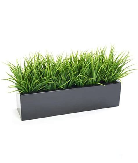 grass bush in trough planter premium outdoor quality