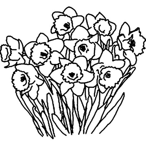 black and white coloring pages of roses coloring pages of flower bouquet clipart best