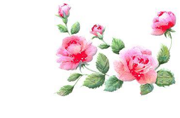gif fiori gif animate il meglio web