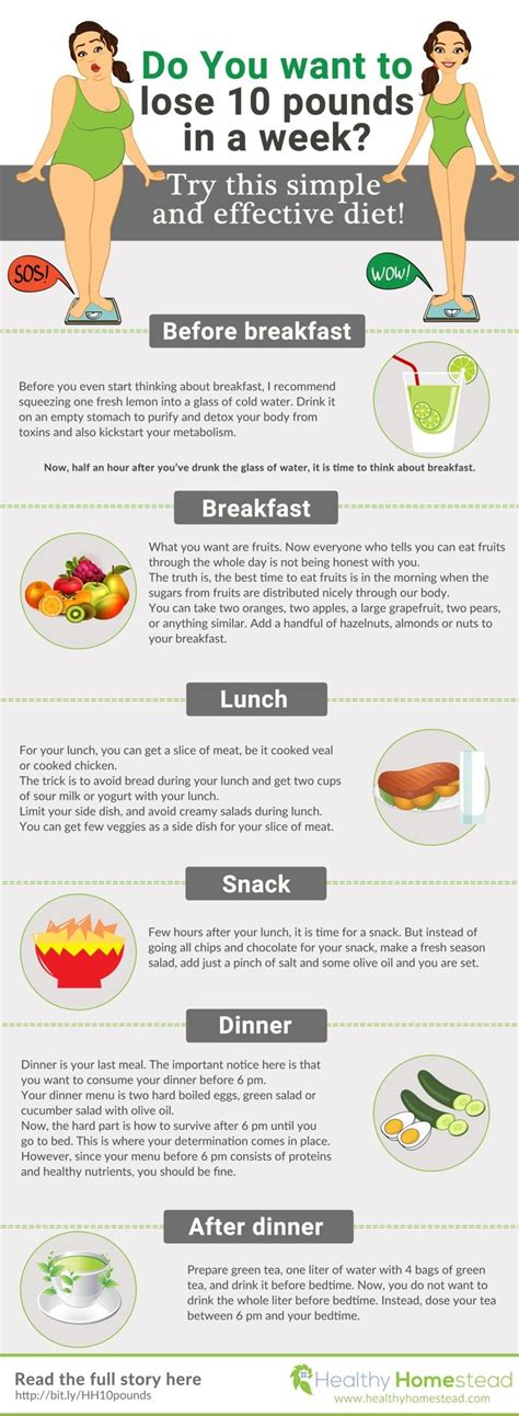 at home diet plans 25 best ideas about egg diet plan on pinterest 2 week