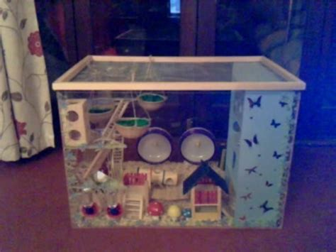 mouse cages  scratch  aquarium tank