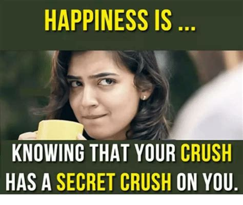 Meme About Memes - happiness is knowing that your crush has a secret crush on