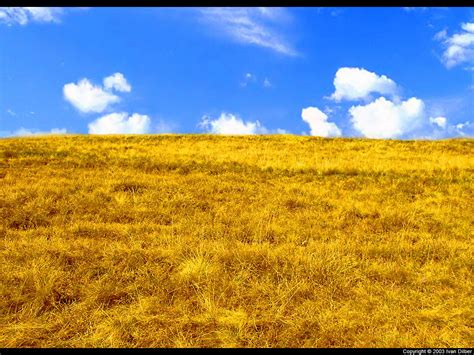 Yellow Landscape Pictures Yellow And Blue Landscape By Ivanhoe On Deviantart