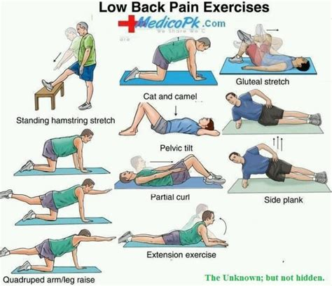 lower back exercises ease your low back exercises health fitness