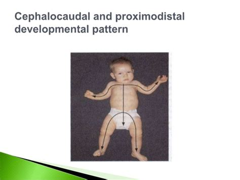cephalocaudal pattern is from growth and development
