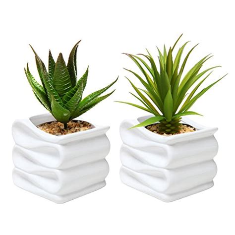 small pot plants top 10 christmas gifts for women christmas access