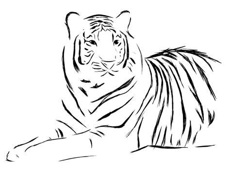 pattern drawing tiger tiger tattoo design by seranatis on deviantart