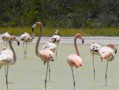 Jaragua National Park Dominican Republic   SheClick.com