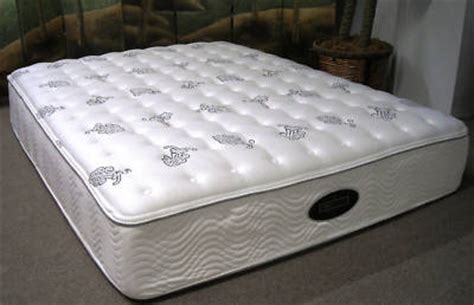 Simmons Black Label Mattress floridamattress simmons beautyrest black label