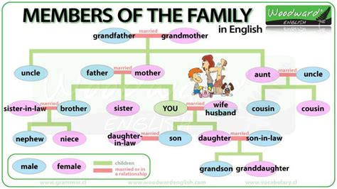 1000 images about english vocabulary on pinterest