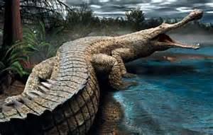 Conect Car O Que é Deus Comigo Os Dinossauros Tamb 233 M Foram Criados Por Deus
