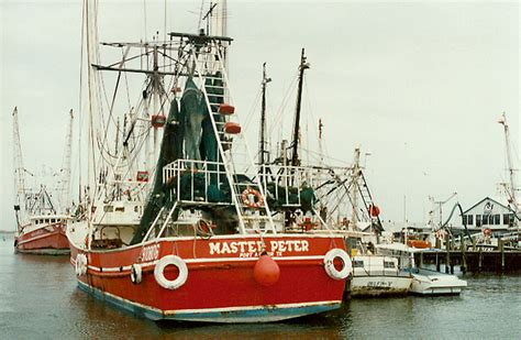 cheap boats galveston or from shrimp boats that harvest from the gulf