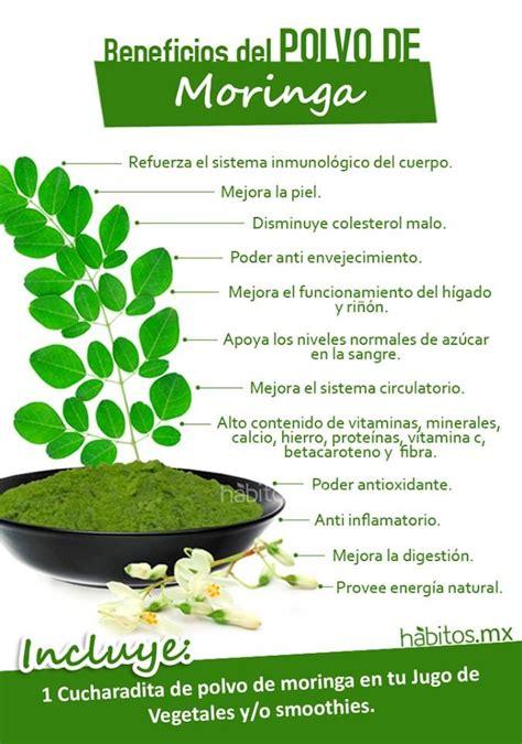 La Vida Organica Polvo Detox by H 225 Bitos Health Coaching Beneficios Polvo Moringa