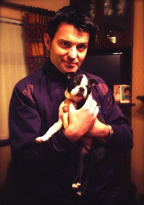 celtic thunder puppy 17 best images about celtic thunder on studios