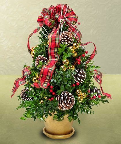 boxwood tabletop christmas tree 14 best oh trees images on ideas ideas and time