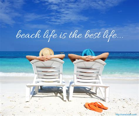 living on the beach beach life www pixshark com images galleries with a bite