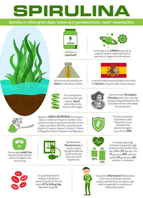 Spirulina Detox Benefits by Best 25 Spirulina Ideas On Cacao Benefits