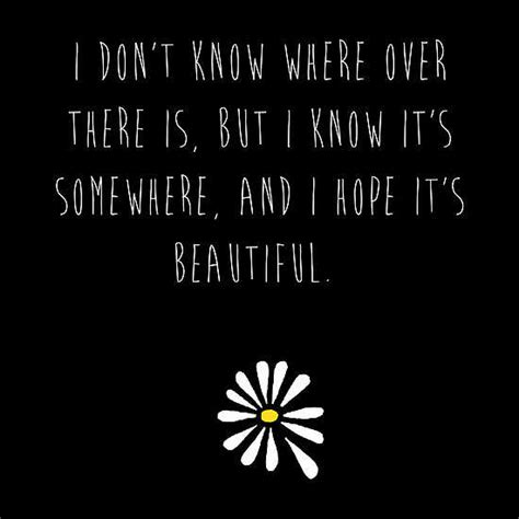 alaska is it real books looking for alaska quotes quotesgram